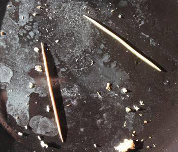 Зубочистки. Персональный проект Сергея Катрана в Краснодарском Музее Концептуальной Инсталляции